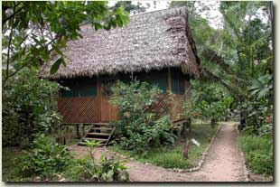 manu wildlife center